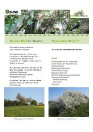 Newsletter 02-2011 (pdf) - Grüner Wall im Westen