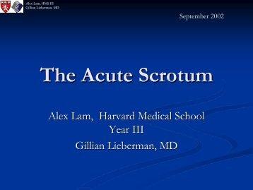 The Acute Scrotum