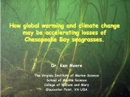 How Global Warming and Climate Change May Be Affecting ...