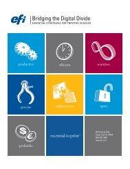 Bridging the Digital Divide - EFI