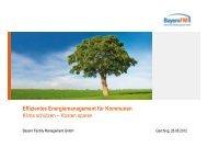 1206256 energiemanagement kommunen [kompatibilitätsmodus]