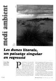 Les aunes litarais^ un paisatge singular en resaressió - Raco