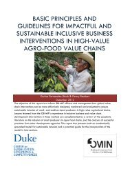 Basic Principles and Guidelines for Impactful and Sustainable