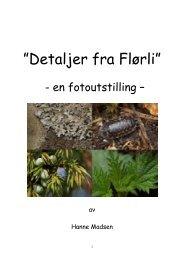 Tekster 2 Utstilling Flørli - Home - Online.no