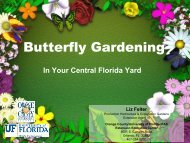 Landscaping for Butterflies - Orange County Extension Education ...