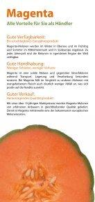 Magenta & Kirene* - Nunhems - Seite 3
