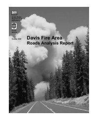 Roads Analysis Report - Scholars