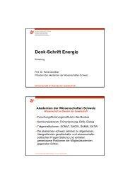 Denk-Schrift Energie - SCNAT