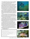 In This Issue - The Slug Site - Page 3