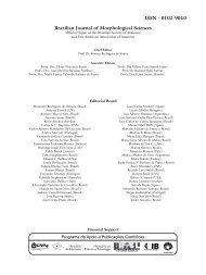 Brazilian Journal of Morphological Sciences ISSN - 0102-9010