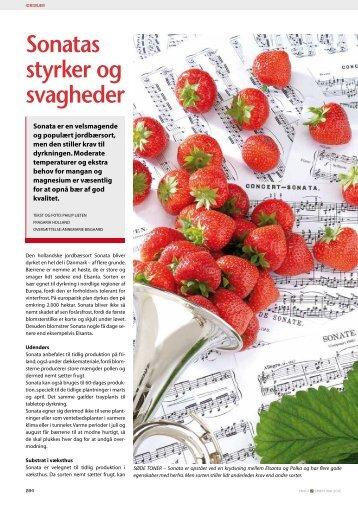 Sonatas styrker og svagheder - Fragaria Holland