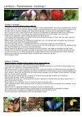 Krydstogt panama - Page 4