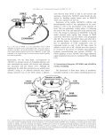 Integrins, membrane-type matrix metalloproteinases and ADAMs ... - Page 6