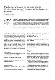 Bulletin of the Geological Society of Denmark, Vol. 30/3-4, pp. 111-115