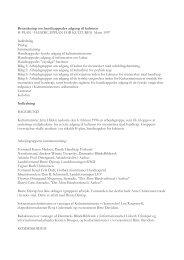 Betænkning om handikappedes adgang til ... - Kulturministeriet