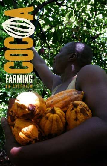 COCOA Farming AN OVERVIEW - staging.files.cms.plus.com