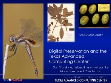 Digital Preservation and the Texas Advanced Computing Center