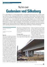 Gudenåen ved Silkeborg