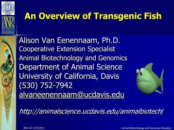 An Overview of Transgenic Fish - Department of Animal Science ...