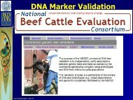 DNA Marker Validation - Department of Animal Science