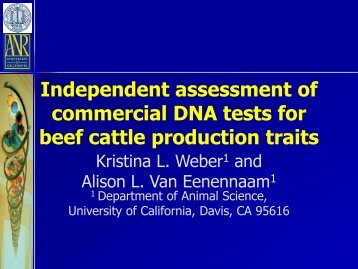 Independent assessment of commercial DNA tests for beef cattle ...