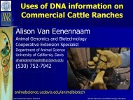 Uses of DNA information on Commercial Cattle Ranches Alison Van ...