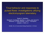 Trout behavior and responses to pulsed flows - Department of ...