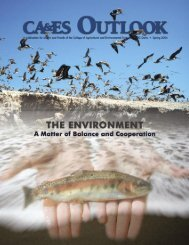 Outlook Spring 2004 - College of Agricultural and Environmental ...