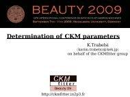 V - Beauty 2009