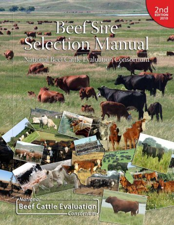 ASC-169: Beef Sire Selection Manual - Department of Animal Science