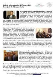 Boletín Informativo No. 15 Febrero 2013 - Secretaría de Relaciones ...