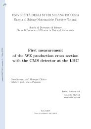 First measurement of the WZ production cross section with the CMS ...