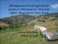 Ethnobotany of small agricultural systems in Mantiqueira's Mountain ...