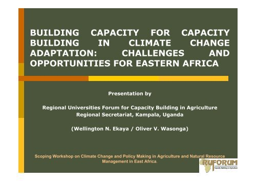 building capacity for capacity building in climate change adaptation