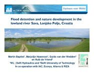 Maps of the lowland river Sava