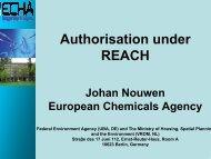 Authorisation under REACH