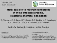 Metal toxicity to macroinvertebrates in mine-affected ... - REACh
