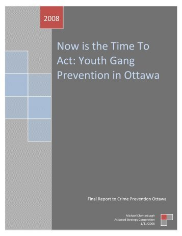 Now is the Time To Act: Youth Gang Prevention in Ottawa - Crime ...