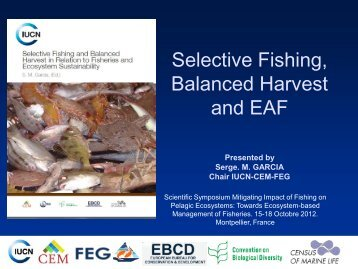 Size - Towards ecosystem-based management of tuna fisheries