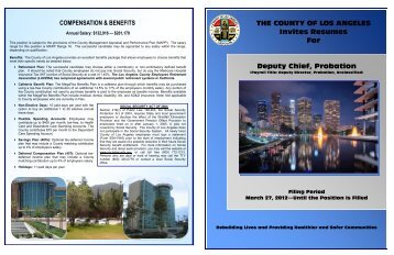COMPENSATION & BENEFITS THE COUNTY OF LOS ANGELES ...