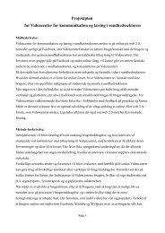 Projektplan for Videncenter for kommunikation og læring i ...