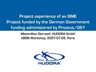 Project experience of an SME Project funded by the German ...