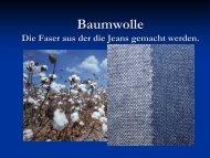 Vortrag Baumwolle