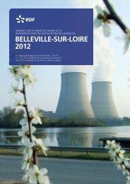 Rapport TSN 2012 - Energie EDF