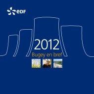 Voir le document (PDF, 1843 Ko) - Energie EDF