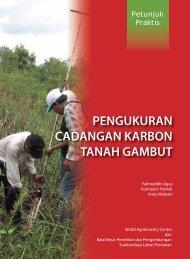 Pengukuran Cadangan Karbon Tanah Gambut (2011)