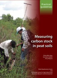Measuring carbon stock in peat soils - Balai Penelitian Tanah