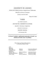 Structures hiérarchiques pour la simulation de fluides