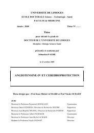 Angiotensine-IV et cérébroprotection - Epublications - Université de ...