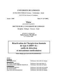 HHV-6 - Epublications - Université de Limoges